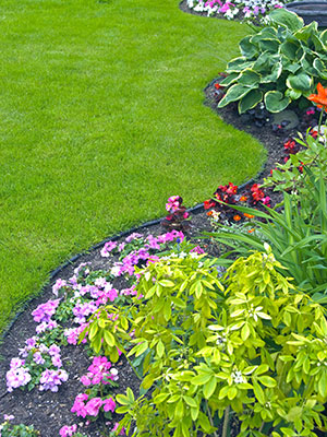landscaping Beaumont, landscaper Beaumont, landscaping company Southeast Texas, SETX landscaping, irrigation company Beaumont TX