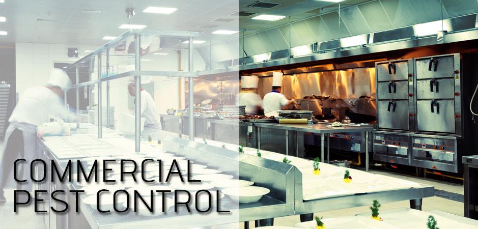 Pest Control Port Arthur - Commercial Pest Control SETX