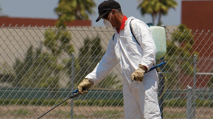 Pest Control Southeast Texas - Industrial Pest Control Beaumont Tx
