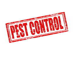 Pest Control in Bridge City TX