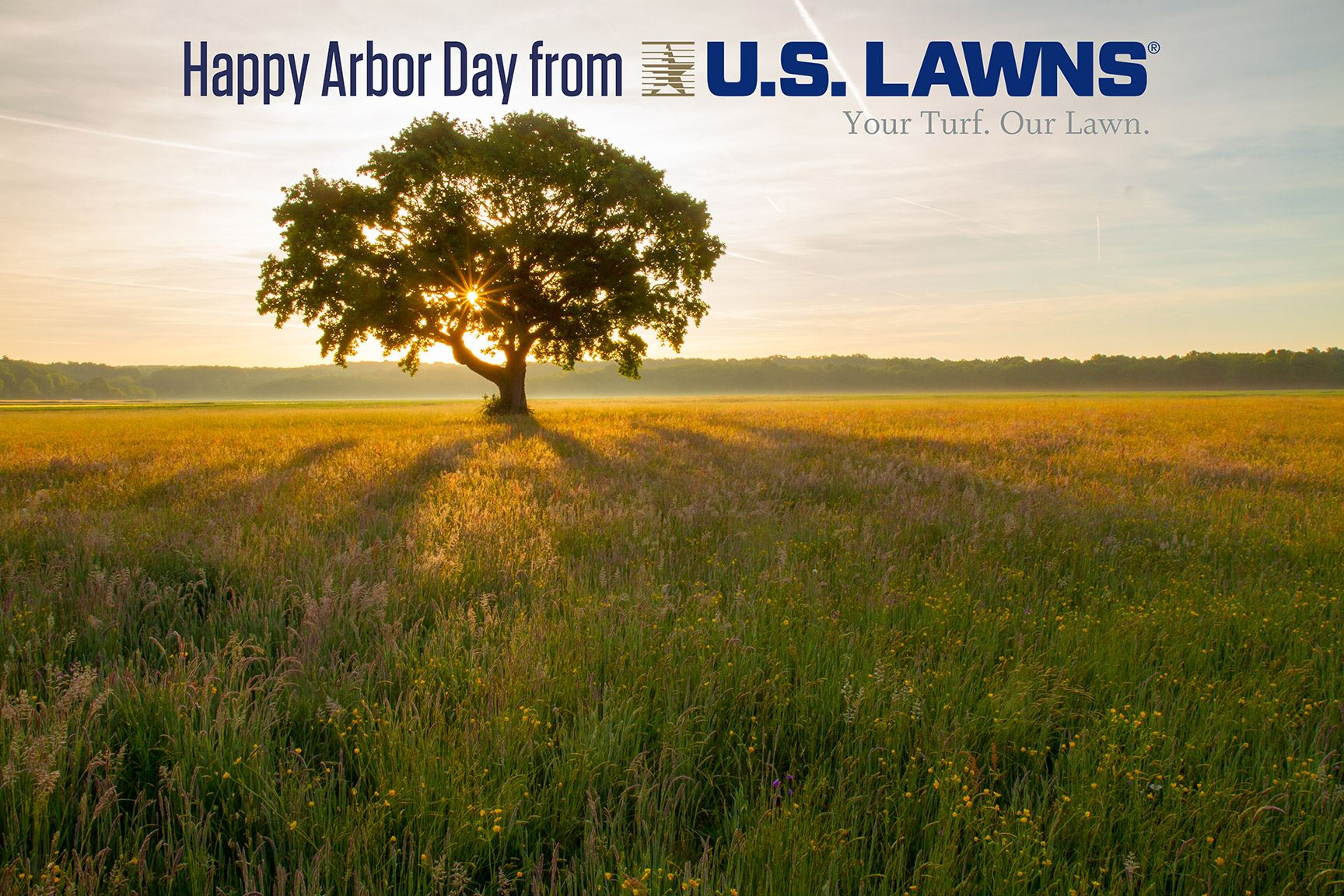 Arbor Day Beaumont TX, Arbor Day Southeast Texas, SETX Arbor Day Activities, US Lawns Beaumont, Landscaping Southeast Texas, SETX landscaping contractor, landscaping Orange TX
