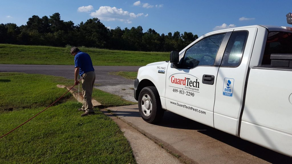 Pest Control Beaumont, Pest Control Port Arthur, exterminator Beaumont, exterminator Port Arthur, pest control Orange Tx, exterminator Orange TX, bed bugs Beaumont, bed bugs Port arthur