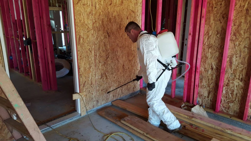 mold kill Port Arthur, mold remediation Nederland TX, mold prevention Mid County, mold control Orange County TX, mold remediation Vidor,